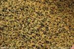 新疆小吃 吐魯番葡萄干